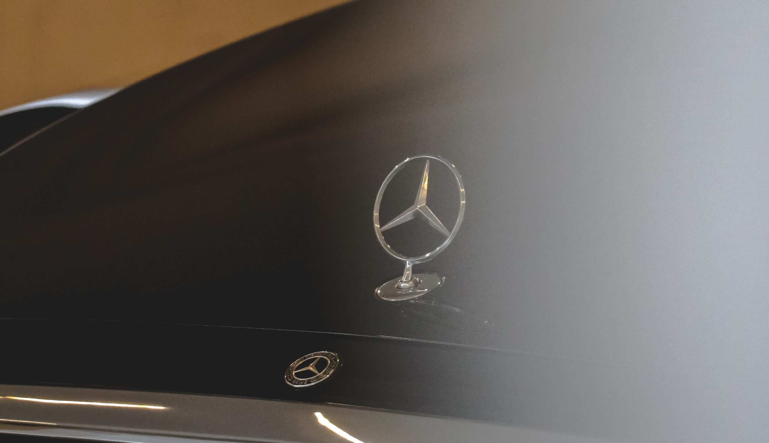 Mercedes Benz collaborates with DSEU
